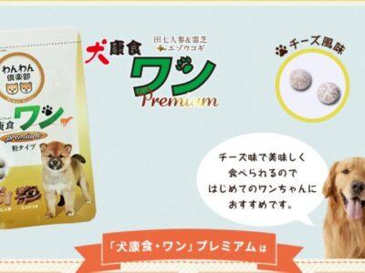 犬康食ワンプレミアムは老犬にいい?評判や口コミがよかったのでお試しした結果は?