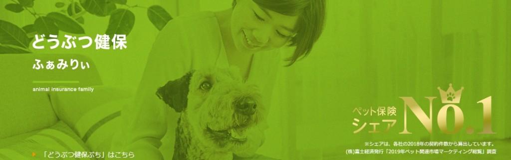 アニコム損害保険のペット保険はどのような保険?